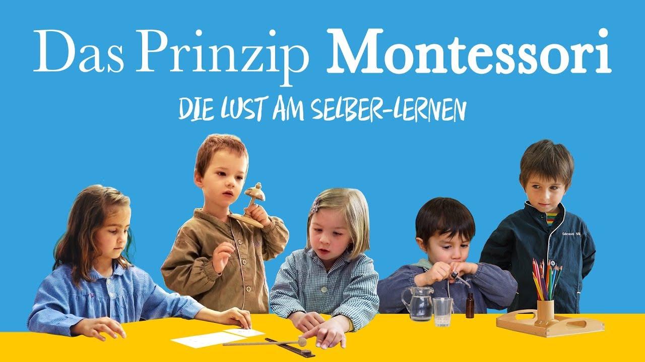 Das Prinzip Montessori Stream